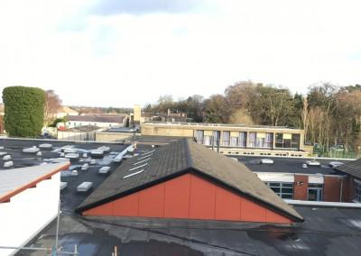 Paralaon Felt Roof